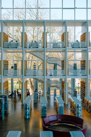 Photo of library with lots of natural light